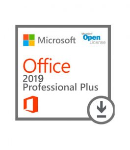 Office Professional Plus 2019 SNGL OLP NL